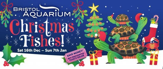 Christmas Fishes at Bristol Aquarium
