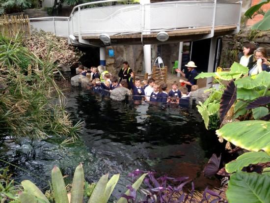 Bristol Aquarium_schools 3