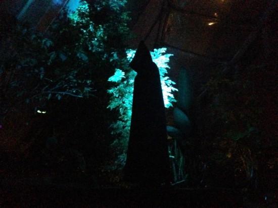 spooky tours sarah figure