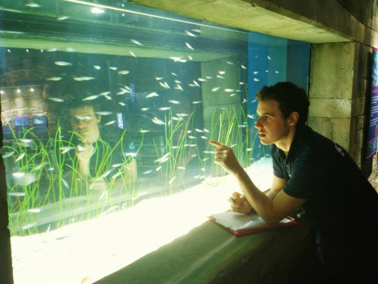Bristol Aquarium's Jake Graham undertaking fishy stock take (1900x1425)