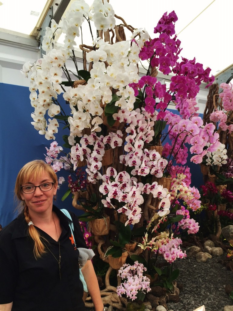 Bristol Aquarium's Wendy Desyllas with the orchid display at Hampton Court Flower Show