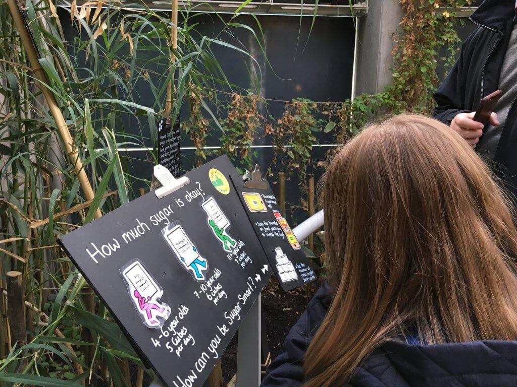 Visitors enjoying the Sugar Display at Bristol Aquarium