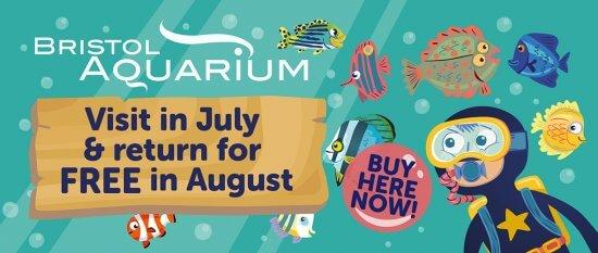 Free return visit in August