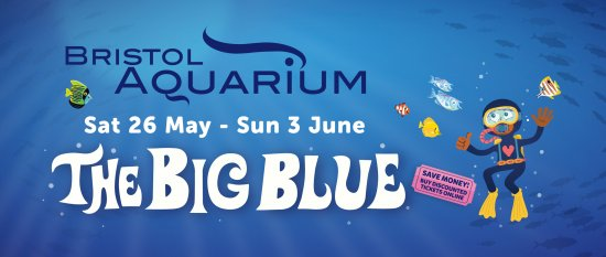 The Big Blue - May Half Term